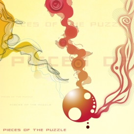 Pieces of the Puzzle